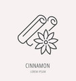 simple logo template cinnamon vector image vector image