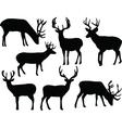 deers silhouette vector image vector image