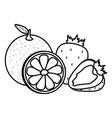 fresh orange citrus and strawberries fruits vector image vector image
