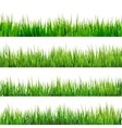 Grass isolated on white EPS 10 vector image vector image