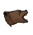 grizzly bear animal head mascot hunting and sport vector image vector image
