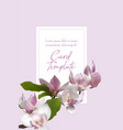 magnolia branch card template tree flower blossom vector image