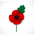 poppy and flower vector image vector image
