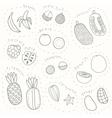 set hand drawn sketch tropical fruits part 1 vector image vector image