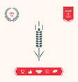 wheat or rye spikelet symbol vector image