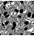 zebra head seamless white background vector image