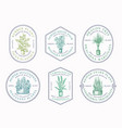 houseplants badges or logo templates collection vector image vector image