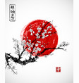 sakura in blossom and red sun symbol japan on vector image