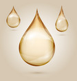 shine yellow oil drops isolated vector image vector image