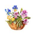 watercolor drawing flowerbed cute purple vector image vector image