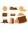 wood material and manufactured products vector image vector image