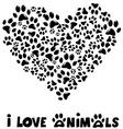 I love animals card vector image