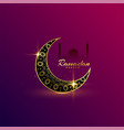 beautiful shiny golden moon ramadan kareem vector image vector image
