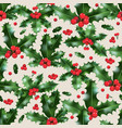 festive nature holly vector image