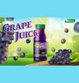 grape juice bottle with sunny background on green vector image vector image
