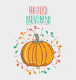 pumpkin hello autumn design icon vector image vector image