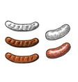 sausage vintage engraving vector image