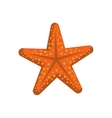 Sea star icon Summer design graphic vector image