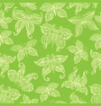 seamless pattern with ornate butterflies vector image