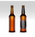 Set of Closed Blank Glass Bottles with Light Beer vector image vector image