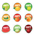 set of logos fruit natural product vector image