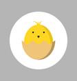baby chick born icon vector image vector image