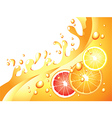 citrus splash horizontal background vector image