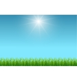 Clean blue sky and green grass background vector image vector image