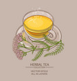cup of yarrow tea vector image vector image
