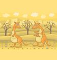 kangaroo in field vector image