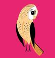large a graphical a fun night owl on a red vector image