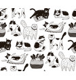 monochrome seamless pattern with cats sleeping vector image