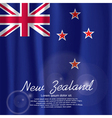 New Zealand Flag Curtain vector image