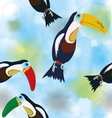 Pattern Toucans on watercolor background vector image