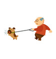 senior old man walking with angry dog domestic vector image vector image