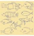 Sketch of sea Fish vector image