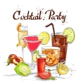 Contemporary Classics Cocktail Set cocktail party vector image