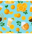 Juice drink pattern vector image