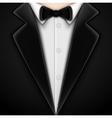 Tuxedo with bow tie vector image