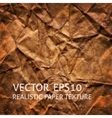 Brown crumpled paper background vector image