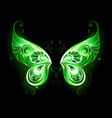 Green Fairy Wings vector image vector image