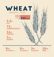 health benefits of wheat nutrition facts vector image vector image