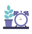 house plant with alarm clock isolated icon vector image