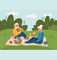 old couple having picnic outdoors happy vector image