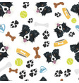 smiling dog border collie vector image vector image