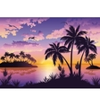 Tropical islands palms sky and birds vector image vector image