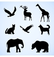 set of with wild and pet vector image