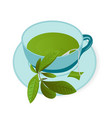 a cup ofgreen tea vector image