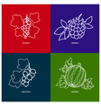 BlackcurrantWatermelonRedcurrantBlackberry vector image vector image