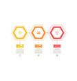 business hexagon infographic design vector image